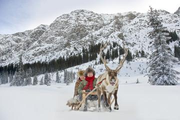 A reindeer pulling a senior couple on a sleigh
