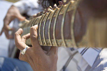 Man playing the sitar, Agra, India, South Asia