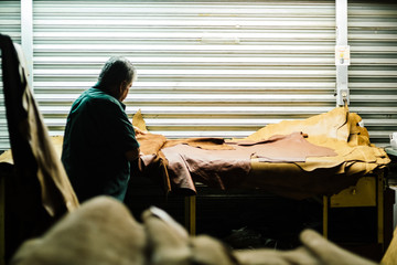 Man in workshop quality checking leather animal hide