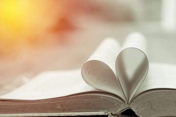 Valentine love book. Vintage filter