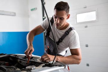 Mechanic checks the oil