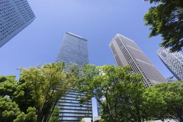 春 新緑 青空 新宿高層ビル街 見上げる 超広角