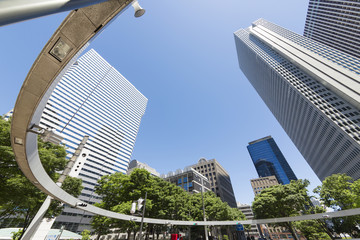 新宿高層ビル街 快晴 青空 新緑 緑 春 超広角で見上げる