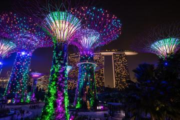 シンガポール ガーデンズ・バイ・ザ・ベイ 夜景