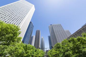 新宿高層ビル街 中央通り 超広角 春 新緑 青空 見上げる
