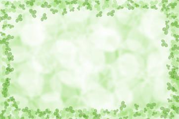 summer green clover leaves background