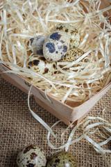 Quail eggs on of burlap cloth