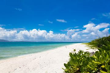 南国のビーチ