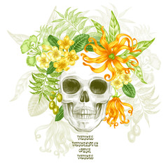 Vector illustration of the skull and flowers.