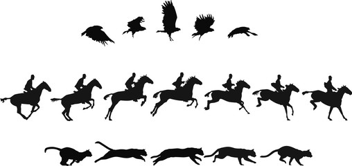 Do The Locomotion 2: motion studies of vulture, horse rider (rider removable) and cat