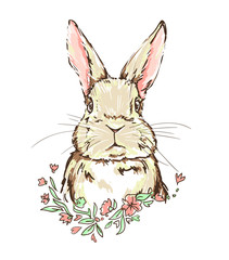 illustration rabbit vector