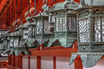 Bronze lanterns at Kasuga Grand Shrine