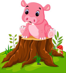 Cartoon cute baby hippo on tree stump