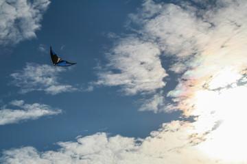 Children's play: kite flying high in the blue sky