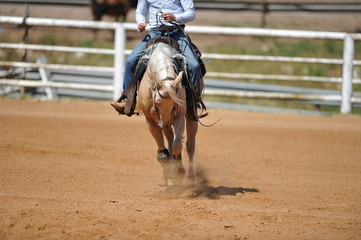 The front view of the rider on horseback