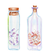 Illustration romantic and fairytale watercolor bottles with autumn leaves and red berries branches inside, hand drawn isolated on a white background