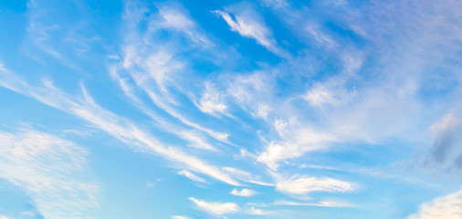 Beautiful of blue sky and group of cloud. White cloud and blue sky. Blue sky background.Beautiful blue sky and white cloud represent the sky and cloud concept related idea. - Panorama Effect