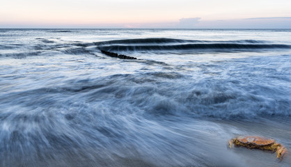 Fototapete - Wellenbewegung am Strand mit Krabbe