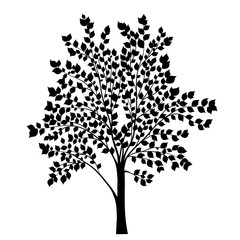 Tree with leaves silhouette