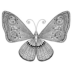 Butterfly with intricate detailed hand-drawn wings (flowers, vines, ferns, vegetation, geometric shapes). Black white adult, grown-up coloring page for print.EPS 10