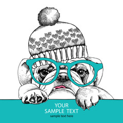 The poster of portrait bulldog in the hat and with glasses. Vector illustration.