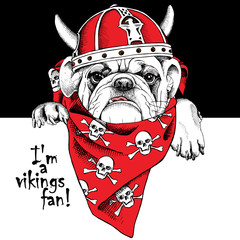 The portrait of a dog in the viking helmet and in the neckerchief with the image skulls. Vector illustration.