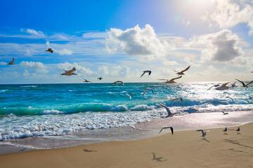 Wall Mural - Singer Island beach at Palm Beach Florida US