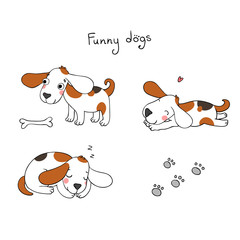Funny cartoon dogs with a bone