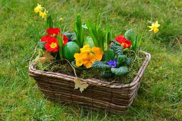Frühlingskorb mit Ostereier
