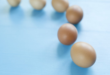several eggs isolated