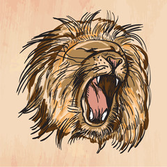 Lion - An hand drawn vector