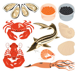 set of various marine animals and fish for seafood