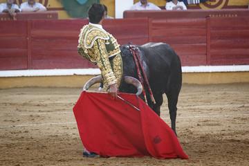 Torero toreando en la plaza. Tarde de toros. Fiesta Nacional.