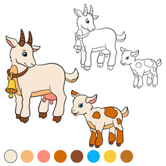 Coloring page. Color me: goat. Mother goat with her baby.