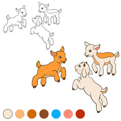 Coloring page. Color me: goat. Three little cute baby goats.