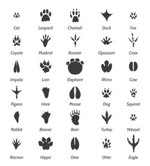 Animal tracks and bird footprints. Black vector icons and signs