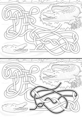 Crocodile maze