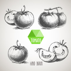 Set of hand drawn tomato. Organic eco food