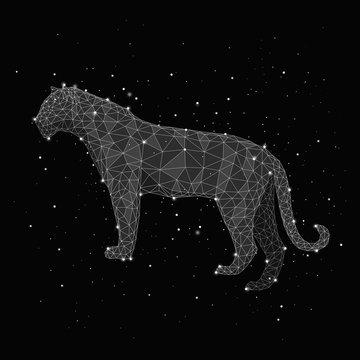 Illustration of constellation forming leopard against black background