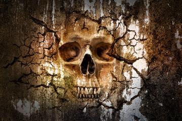 Skull pattern on cracked wall