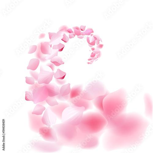 Wall mural Sakura falling petals flow. Vector illustration