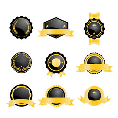 set of blank badge with black and gold color
