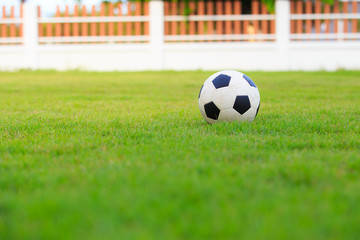 Football isolated on field of green grass