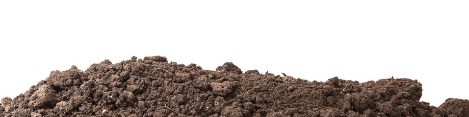 the soil for planting isolated on white background Wall mural