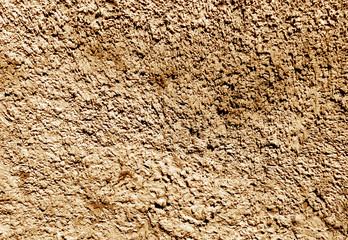 Photo Blinds Coffee beans Grungy color plaster wall texture.