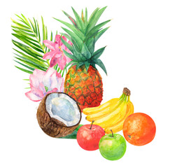 tropical fruit composition, pineapple, bananas, oranges, apples, red and green, coconut, lotus pink flowers and leaves on white background, watercolor painting, realistic illustration