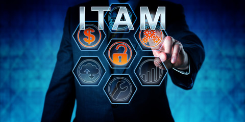 Business Person Touching ITAM