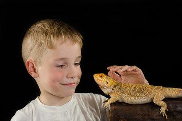 closeup of little boy playing with a pet lizard