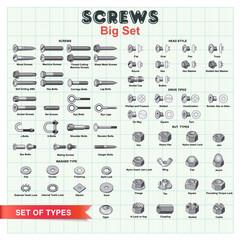 SCREWS Big Set