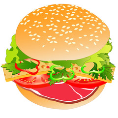Meat burger, isolated on white, vector